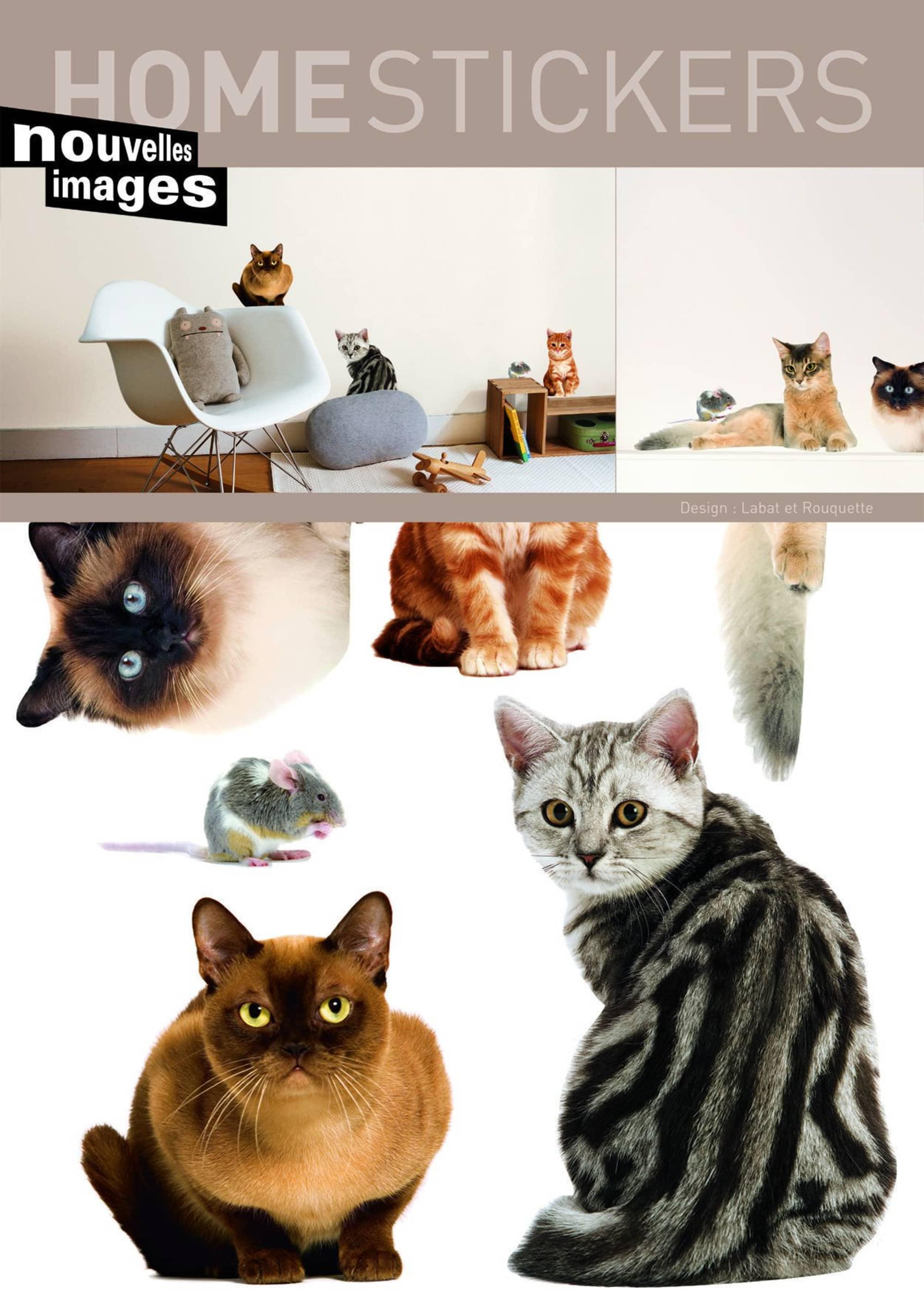 Fesselnde Wandtattoo Katzen Galerie Von