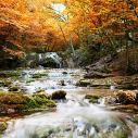 """Bild """"Natural autumn waterfall"""" Vorderansicht"""