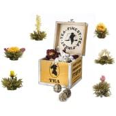Geschenk-Set Erblüh Tee, 7-tlg. Weißer Tee Vorderansicht