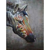 Bild Colour Zebra Vorderansicht