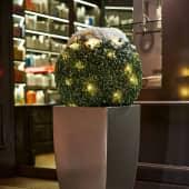 Kunstpflanze Beleuchtete Buchsbaumkugel Katalogbild