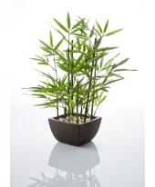 Kunstpflanze Bambus, mit Übertopf, Höhe ca. 46 cm Vorderansicht