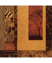 """Bild """"African Studies II"""", 49x49 cm Vorderansicht"""