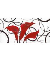Bild Rote Callas Vorderansicht