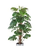 Kunstpflanze Philo-Baum, Naturstamm, Naturstamm, ca. H180 cm Vorderansicht