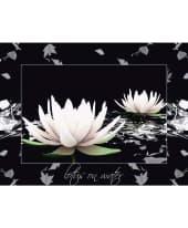 Bild Zwei Lotusblüten auf dem Wasser, Motivrahmen Vorderansicht