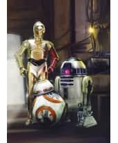 Fototapete Star Wars-3 Droiden, Papier Vorderansicht