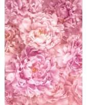 Fototapete Blüten Vorderansicht