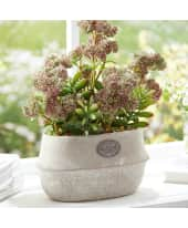 Kunstpflanze-Topfblume Country Flower Katalogbild