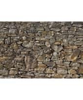 """Fototapete """"Stone Wall"""", 368x254 cm Vorderansicht"""