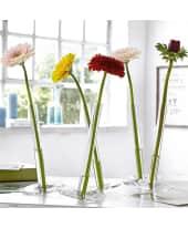 "Vase ""Balance"", Glas Katalogbild"