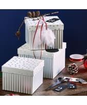 Geschenkbox-Set Silver Shine, 3-tlg Katalogbild