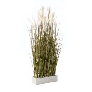 Raumtrenner-Gras