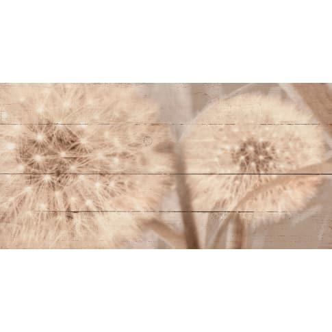 Bild Pusteblume, geweißte Holzbretter Vorderansicht