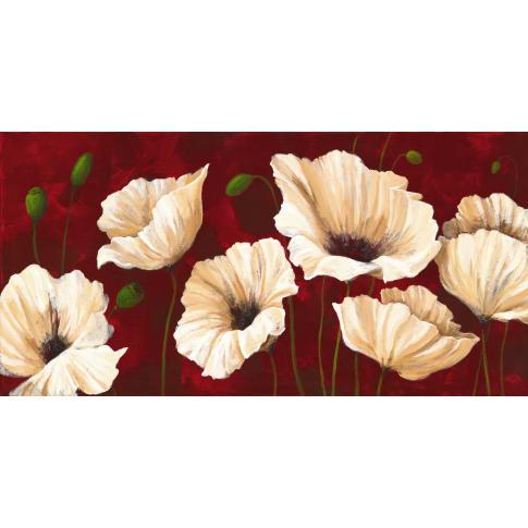 Bild White Poppies on Red Vorderansicht