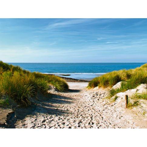 Bild Strand mit Sanddünen Vorderansicht