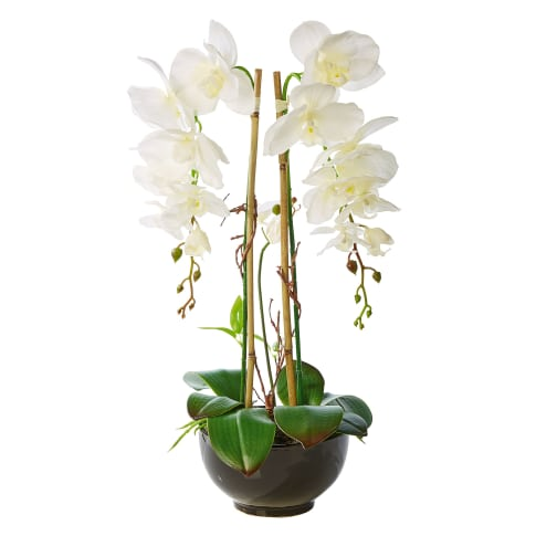Kunstpflanze Orchideentopf Grace, mit Übertopf, Höhe ca. 63 cm Vorderansicht