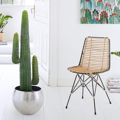 Kunstpflanze Kaktus Katalogbild