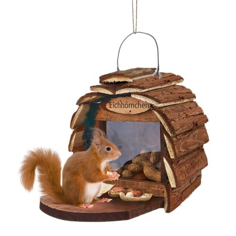 Futterhaus Eichhörnchen Vorderansicht
