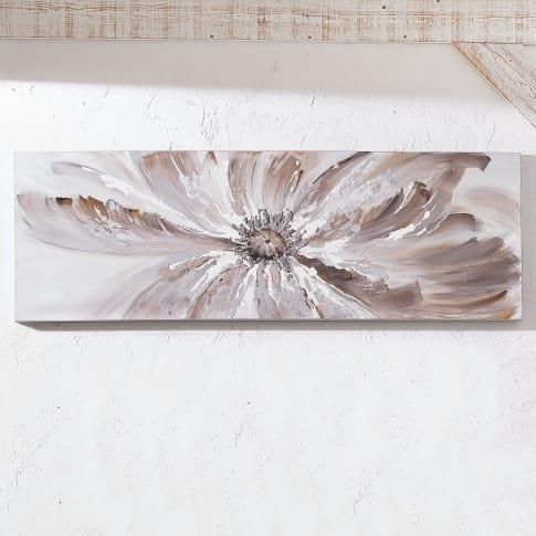 Bild Blossom Katalogbild