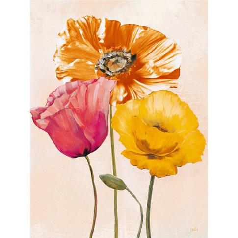"""Bild """"colourful poppies II"""" Vorderansicht"""