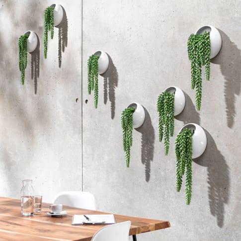 Kunstpflanze Ranken im Wandpflanztopf, modern, Kunststoff, Steingut Katalogbild