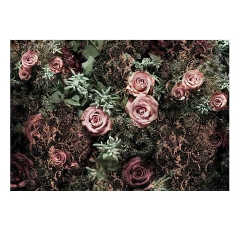 Fototapete Roses, Papier, ca. L368xH254 cm Vorderansicht