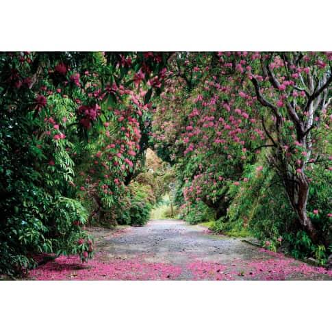 Fototapete Blütengang, Papier, ca. B368xH254 cm Vorderansicht