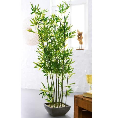 Kunstpflanze Bambus, Polyestergewebe/ Terrakotta, ca. H150 cm Katalogbild