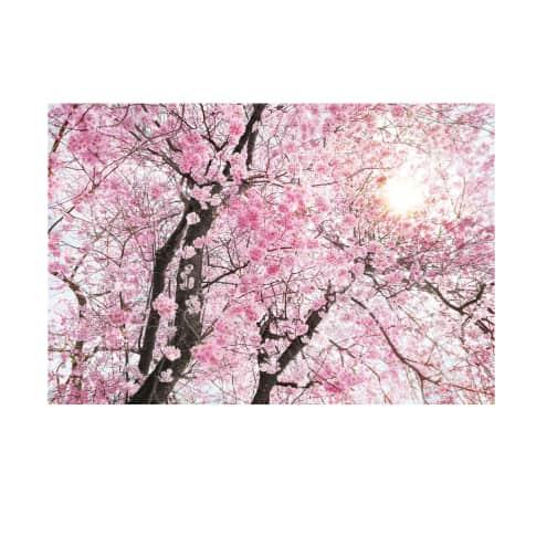 Vlies Fototapete Japanische Kirschblüte, ca. 368 x 248 cm Vorderansicht