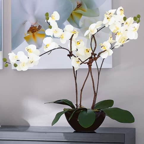 Kunstpflanze Orchideentopf Modern, Kunststoff/ Keramik, ca. H70 cm Katalogbild