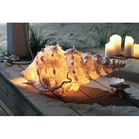 Outdoor-Leuchte Muschel, Outdoor geeignet, Polyresin Katalogbild