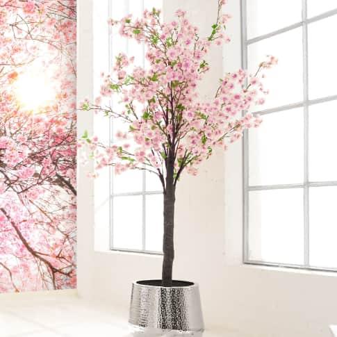 Kunstpflanze Kirschbaum, in 2 Blüten-Farben enthältlich, Polyester, Kunststoff, ca. H180 cm Katalogbild