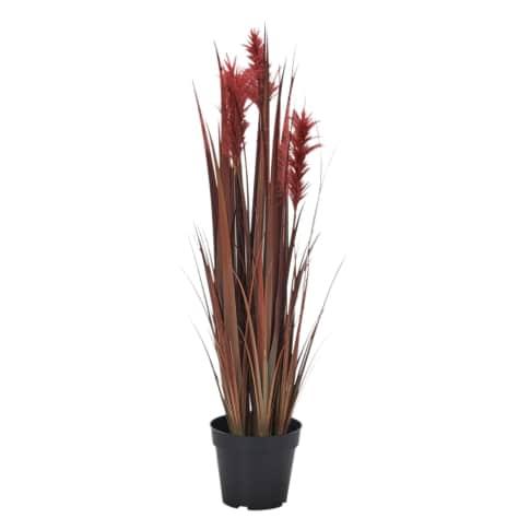 Kunstpflanze Ziergras Roja Vorderansicht