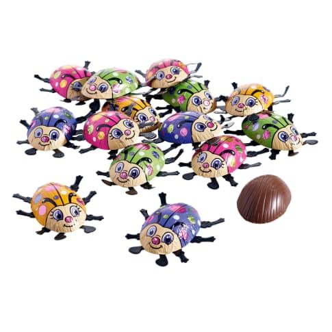Schokoladen-Set, 24-tlg. Käfer Vorderansicht