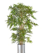 Kunstpflanze Bambusbaum, Naturstamm, ca. H160 cm Inszeniertes Bild