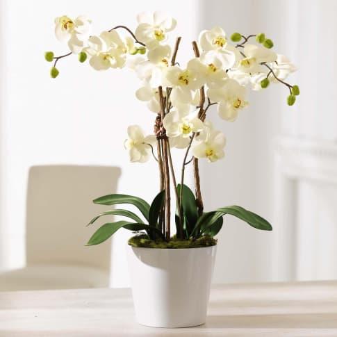 Kunstpflanze Orchideentopf Elegance, Kunststoff/ Naturholz/ Keramik, ca. H54 cm Inszeniertes Bild