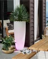 LED-Deko-Leuchte Pflanztopf, ca. H100 cm Inszeniertes Bild