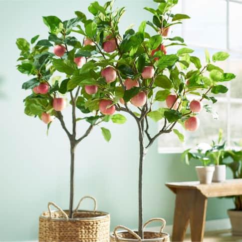 Kunstpflanze Apfelbaum Inszeniertes Bild