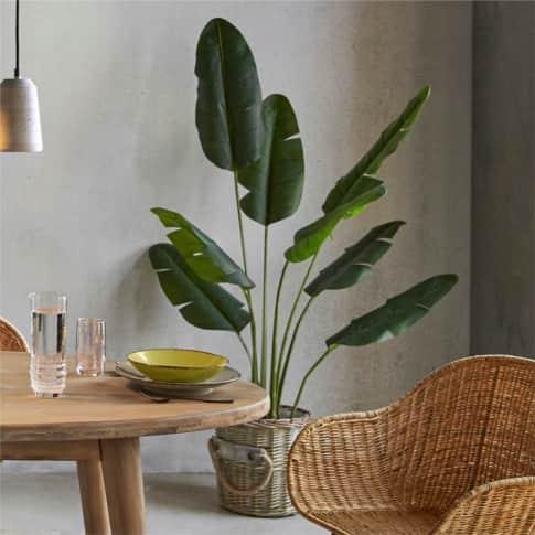 Kunstpflanze Traveller Palme Inszeniertes Bild