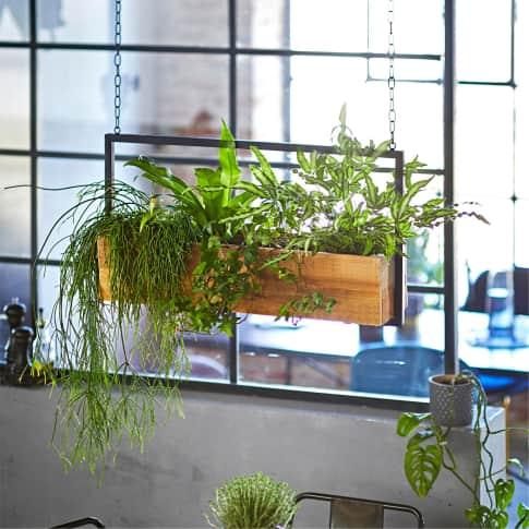 Pflanzenhänger Industrial Inszeniertes Bild